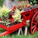 bahçe dekorasyon için çiçek alanı